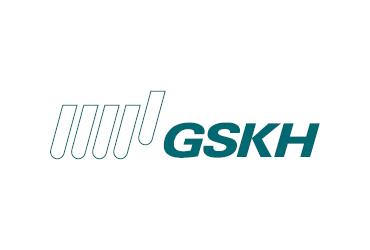 skirennteam - Sponsor-GSKH.png